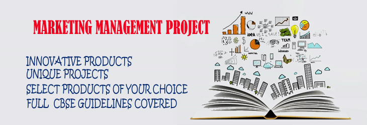 Marketing Management Project Features